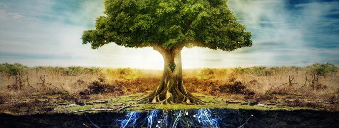 el Árbol de la Vida como el kabala